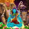 TANDAV SPIRIT(Featuring Special Vocal Effects by Goa Gil)