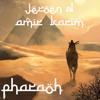 Jeroen D & Amir Karim - Pharaoh (Original Mix)