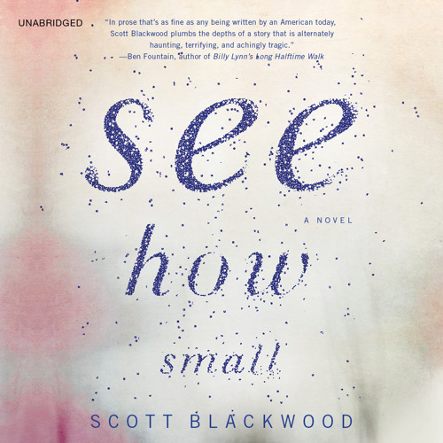 See How Small by Scott Blackwood, Read by Rengin Altay - Audiobook Excerpt