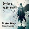 Mr. Mister - Broken Wings  (deeper House Edit)