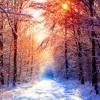 White Winter Hymnal-Pentatonix (Cover)