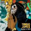 Talk That Shit Trinidad - Trinidad James