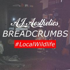 AJ Aesthetics - BREADCRUMBS prod. Fastaro