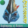 Cassowary Rock (Squawk Like A Dinosaur)