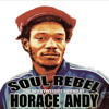 THE HEAVYWEIGHT SOUND OF HORACE ANDY