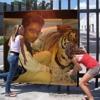 MERO MAN HE GYO LATA PATA jabalpur style mix abbu katni mp 9302695124