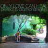Prefect Vs Diamond Lights - Only Love Can Heal (Ditto Remix) buy: http://goo.gl/oTNiiS