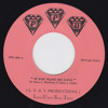 Dwight Sykes L.U.S.T. Productions -- If You Want My Love --  PPU 7