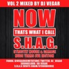 Now Thats What I Call S.H.A.G (strictly house & garage) Vol2 Nude Yrs Eve Edition