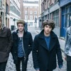 The Vamps - Wild Heart (cover)