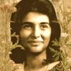 In Memoriam / Sheila Nanda