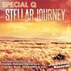 Special Q Stellar Journey Toni The Mmg Remix mp3