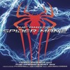 The Amazing SpiderMan 2: Soundtrack Rest Of My Life Film Version