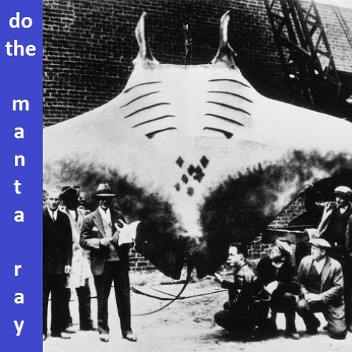 Song-a-Week #5: Do the Manta Ray