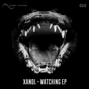 Watching by Xandl