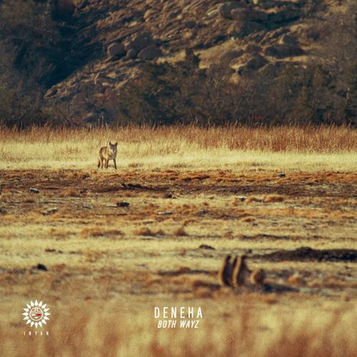 Deneha - Both Wayz - (Thomas Gandey Remix)