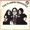 Sometimes (The Flamin' Groovies Cover)
