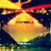 Trideca- Contrast (HSMR release)