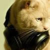 The Comments Song 5 (XxRoziexX Remix) .MP3