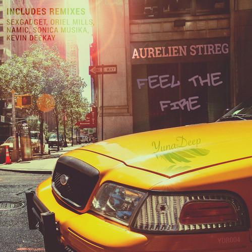 Aurelien Stireg - Feel The Fire (original Mix) Preview