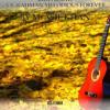 Tum Todo Na Full Song Hindi(Vocals By M. Asif Khan) Music A.R. Rahman