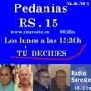 PEDANEOS RS15 20140126