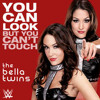 WWE - The Bella Twins Theme Song - You Can Look (But You Cant Touch)