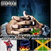 2015 Dancehall/Hiphop Mixx mp3