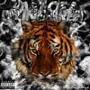 Download 02. EL Stupido Mp3