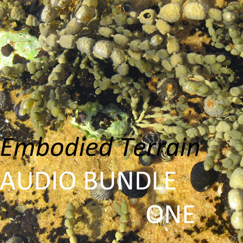 1 Orienting to the Terrain - sample