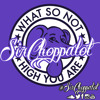 Free Download What So Not High You Are Branchez Remix SIRCHOPPALOT REMIX Mp3