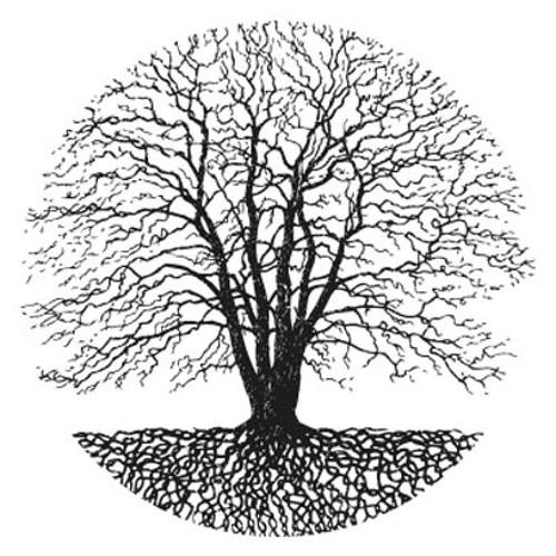 Hoge Toon - HT7 Podcast #003 (13-01-2013)