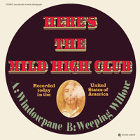 The Mild High Club Windowpane Artwork