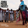 Global Notes: The Zomba Prison Project