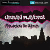 Sylenth Urban Flavors (70 Patches)