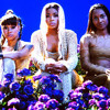 TLC-Unpretty
