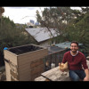 There's Something Special About The Backyard Chicken Coop