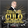 Pitbull ft. Lil Jon & Various Artists - Culo (Karlos Perea vs Daddy Yankee Version)