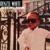 Denzel White - Sitting Home (Total Cover)