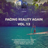 FACING REALITY AGAIN VOL. 13 MIXTAPE (FEBRUARY 2015)