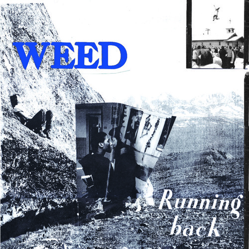 Weed - Stay in the Summer
