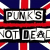 F**k!! I Say Punk!