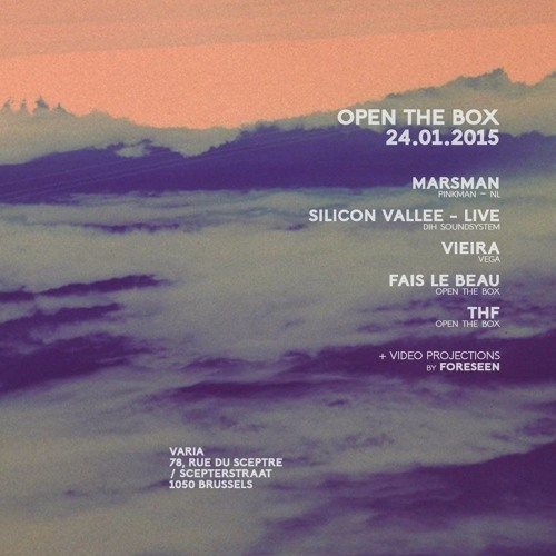 Silicon Vallée - Live @ Open The Box 2015 - 01 - 24