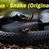 Noxious - Snake (Original Mix)