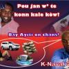HT 50 (DNME)'' Pou Jan W' Te Konn Kale Kòw'' kanaval 2015