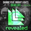 Dannic feat. Bright Lights - Dear Life VS Thomas Newson - Ravefield -(Rafa.Silva Edit Mashup)