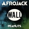 PEANUTS (WALL RECORDINGS)