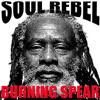 THE HEAVYWEIGHT SOUND OF BURNING SPEAR