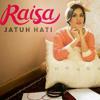 Raisa - Jatuh Hati [short cover]
