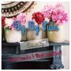 By My Side (Maudy Ayunda ft David Choi) Cover Fransisca Eka & Stephanus Rian